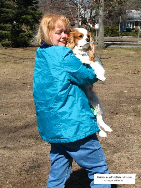 What to do if an off-leash dog approaches
