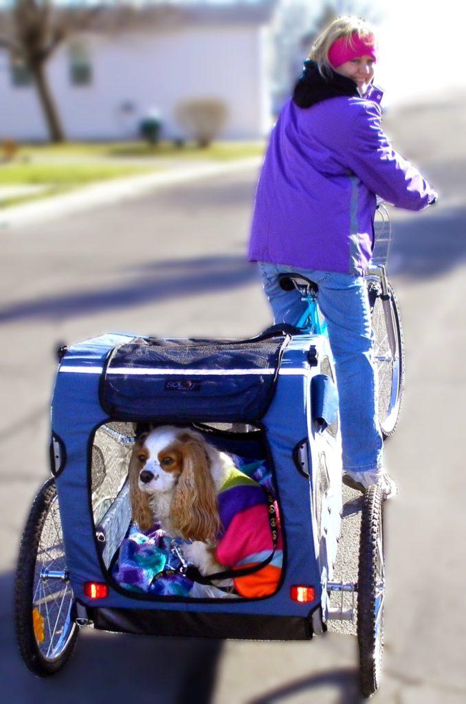 Solvit HoundAbout Pet Bicycle Trailer Reviews