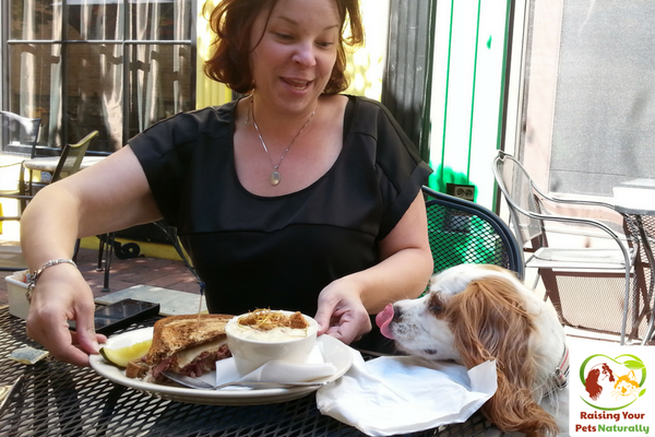 Dog-Friendly Vacations: Dog-Friendly Chicago, Illinois restaurants and cafes that allow dogs. Don't miss out on all the fun dog-friendly activities Chicago has to offer. Click to join the fun. #raisingyourpetsnaturally