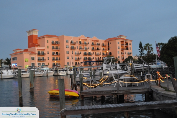 Best beach condos in Florida