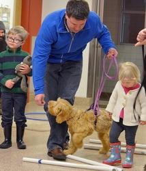 Perrysburg Puppy Classes