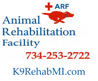 Michigan Dog Rehab