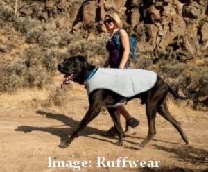 Cooling Jackets For Dogs
