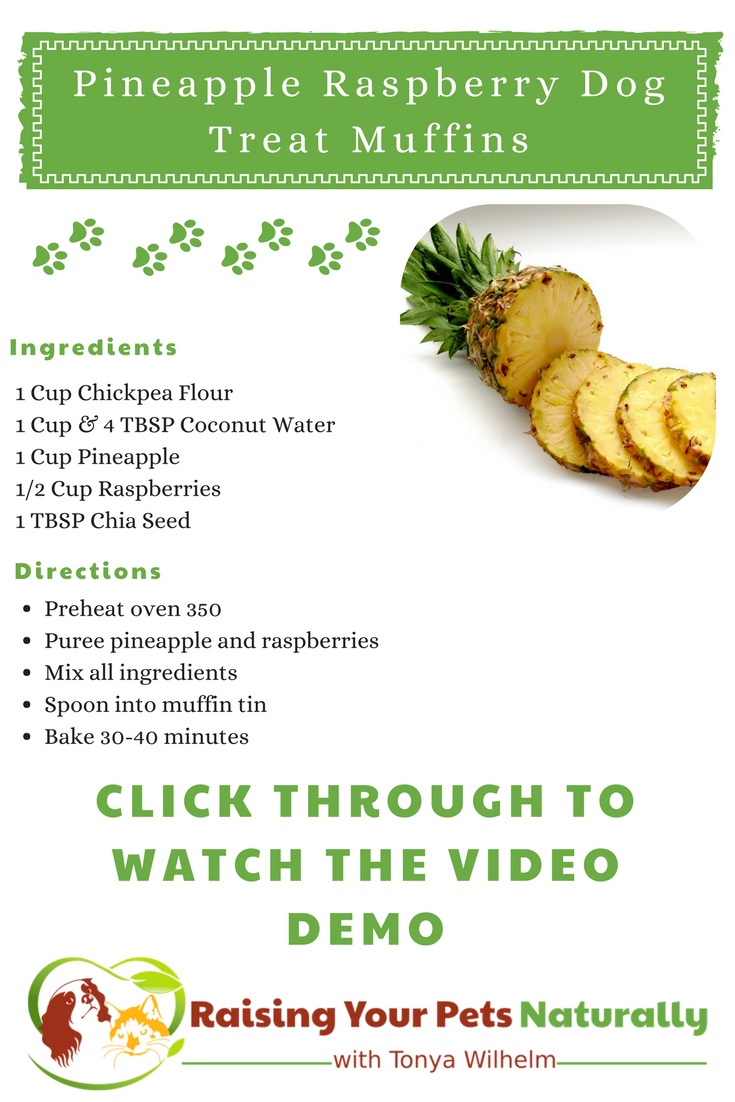 Healthy and Homemade Dog Treat Recipes   Pineapple and raspberry dog treat muffins for dogs. DIY video. #raisingyourpetsnaturally #raisingyourpetsnaturally