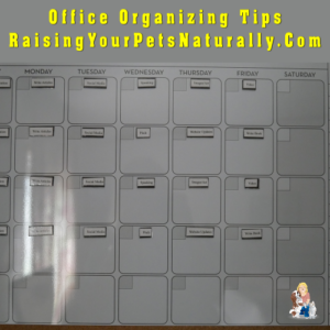 Office Organization Tools