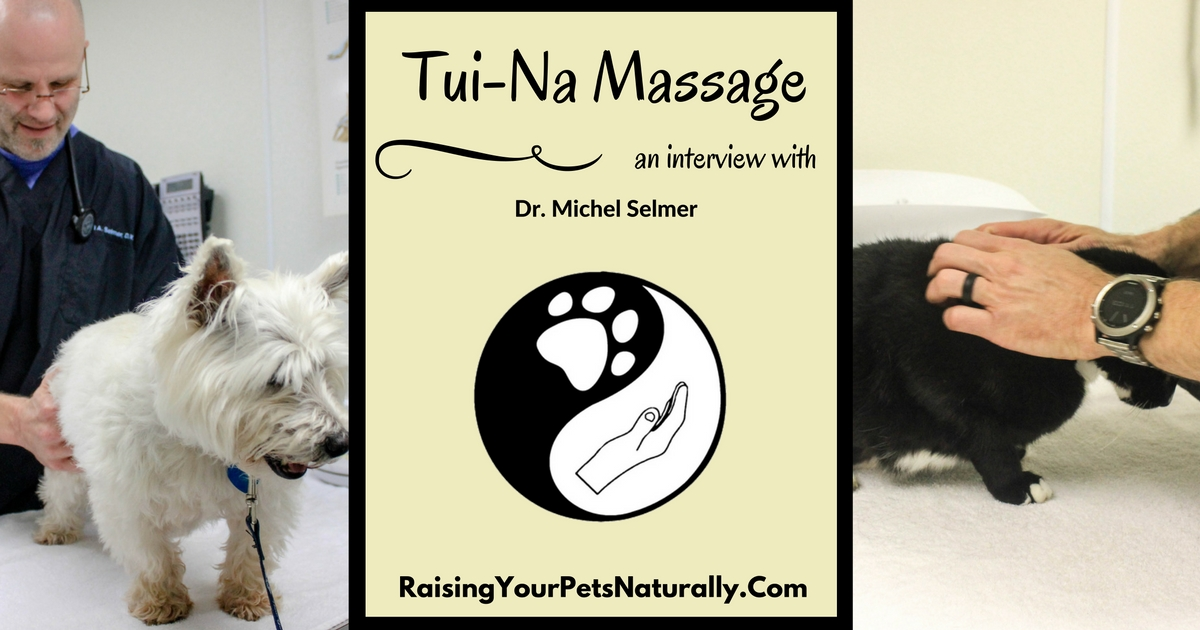 An Intro to Tui-Na Massage for Pets. Tui-Na is based on the fundamentals of Traditional Chinese Medicine. #raisingyourpetsnaturally