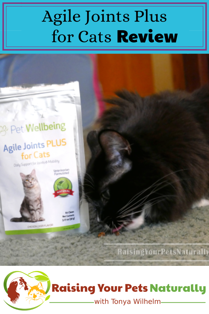 Agile Joints PLUS for Cats Review. A natural joint support supplement for cats is a must. #raisingyourpetsnaturally #catsupplements #catjointsupplements #jointsupplementsforcats