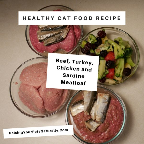 Cooking For Cats Homemade Cat Food Beef Turkey Chicken And