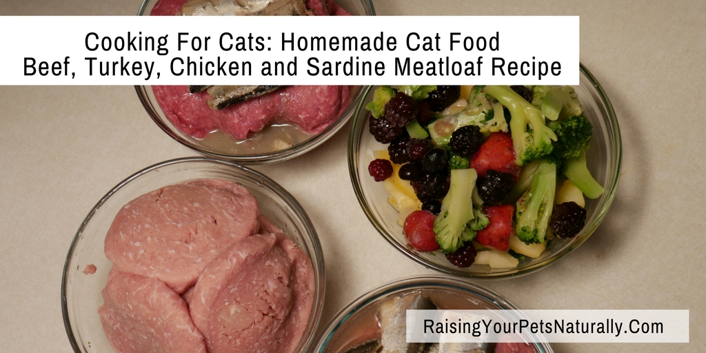 Homemade Cat Food Recipes. A healthy, natural and grain-free cat food recipe. No fillers here, only real food. #raisingyourpetsnaturally