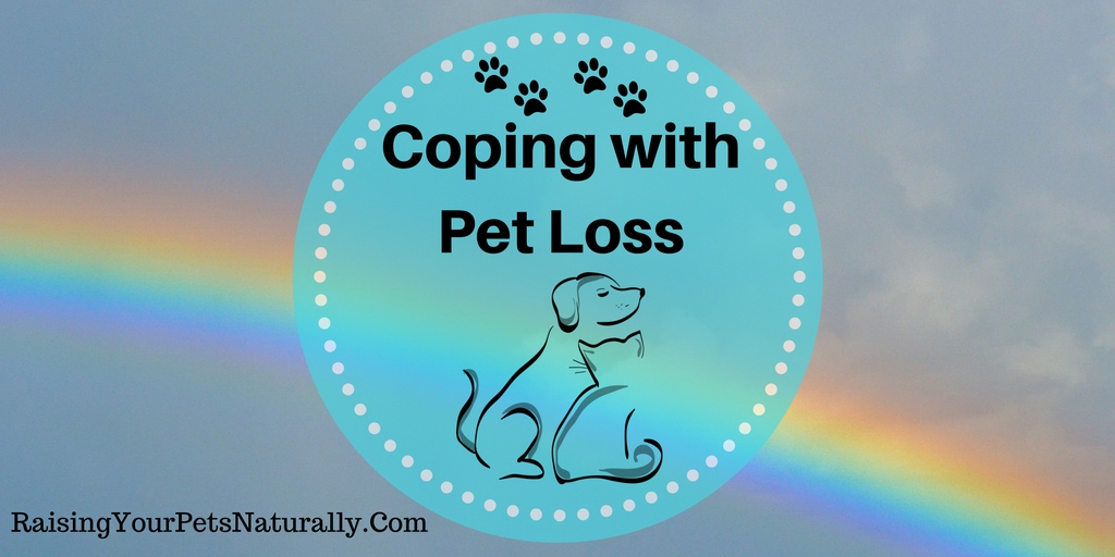 The loss of a pet can be one of the most devastating events in a pet parent's life. Pet loss, and recovering after the loss of a pet, can be very difficult. Grieving the loss of a pet alone can even be so traumatic for people trying to figure out how to cope with the loss of a pet.