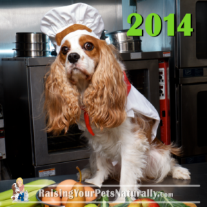 Dexter The Dog Chef