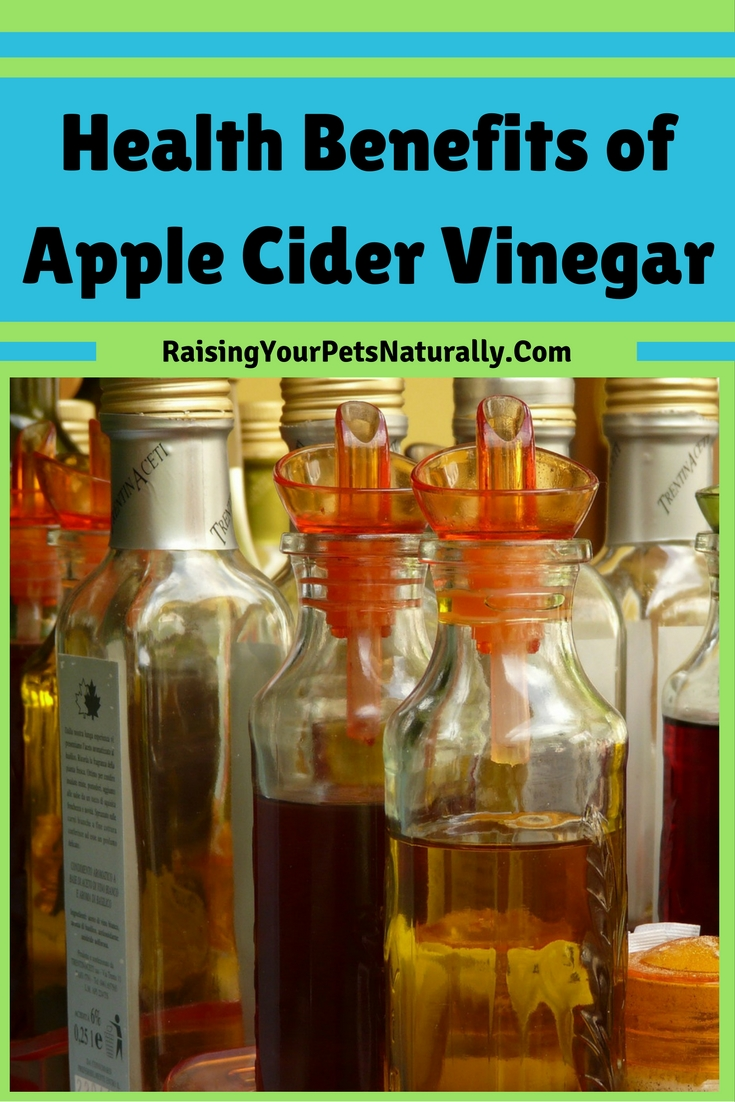Health benefits of apple cider vinegar for dogs and pets. Natural itch spray for dogs, natural First Aid Treatment for Pets, Natural Flea Control for dogs, Aids in Digestion, Yeast Control and more. #raisingyourpetsnaturally
