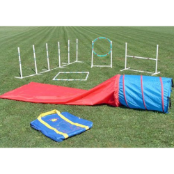 Affordable Agility Equipment in the Bag