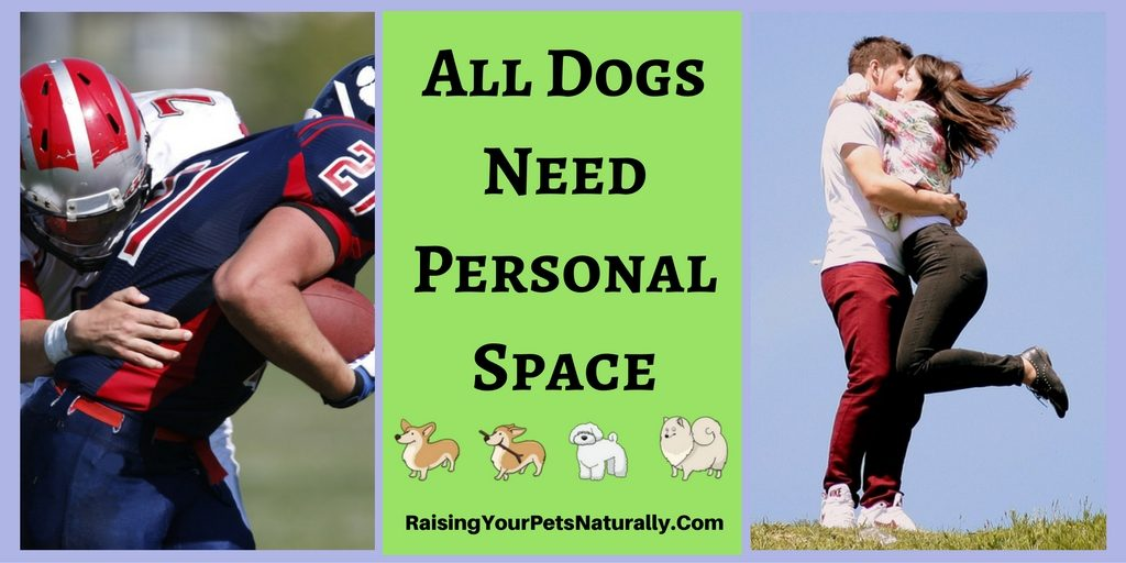 All Dogs Deserve Space