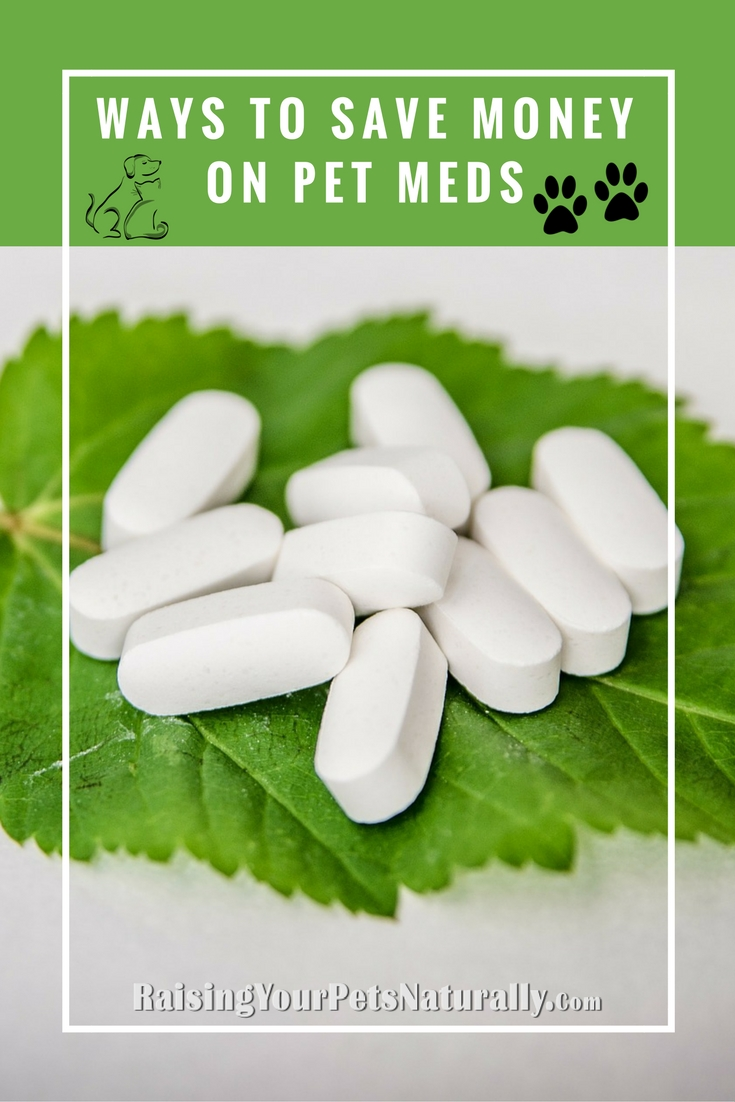I want to talk about ways to save money on your pet's medication when you find your dog or cat does need the help of pharmaceuticals. But, as always, please speak with your veterinarian on natural ways to help support your dog or cat's medical condition.