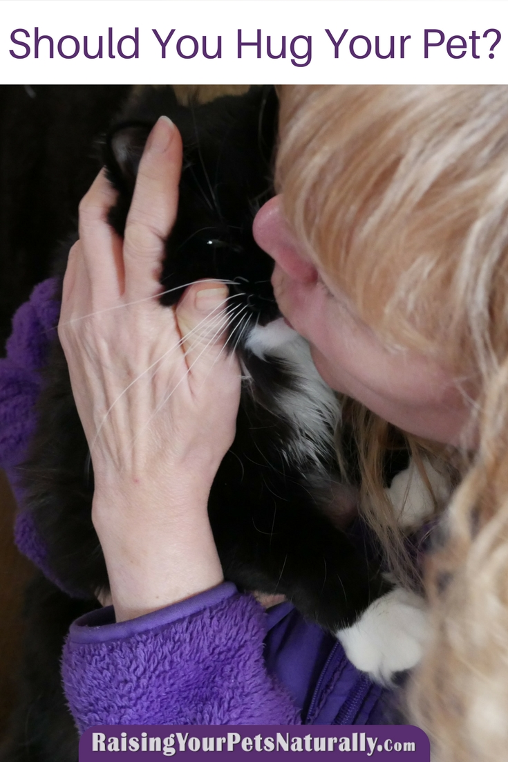 Should you hug your dog? What about a big cat hug? The question is really do dogs or cats like to be hugged? Learn more about how pets feel about being hugged. #raisingyourpetsnaturally