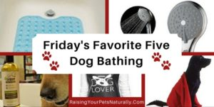 Friday's Favorite Five: Dog Bathing Essentials, Best Natural Pet Grooming Supplies