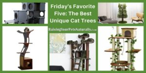 Friday's Favorite Five: The Best Unique Cat Trees for Cats