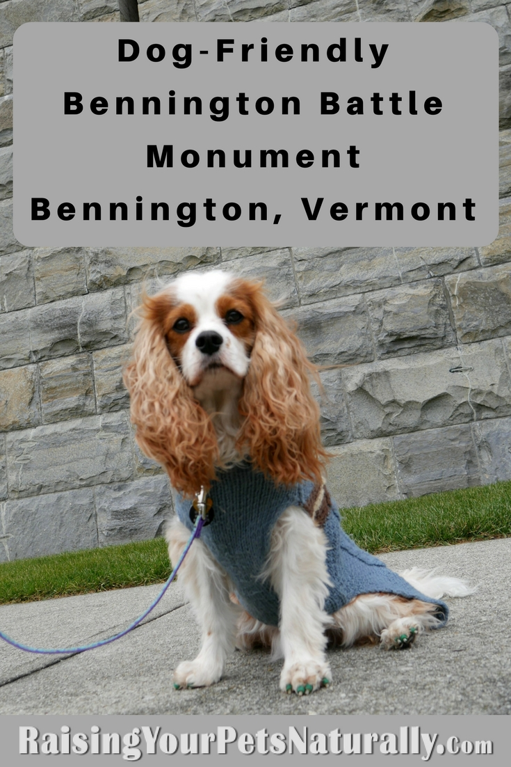 Dog-Friendly Bennington Battle Monument. During our dog-friendly vacation to Vermont, we took a few day trips. One day we headed to Bennington, Vermont and visited the Bennington Battle Monument, which is the tallest structure in Vermont.