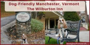 Dog-Friendly Vacations | Dog-Friendly Manchester, Vermont | Wilburton Inn