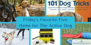 Friday's Favorite Five: Items for The Active Dog