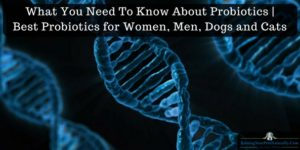 What You Need To Know About Probiotics | Best Probiotics for Women, Men, Dogs and Cats