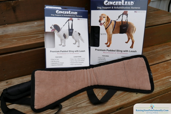 GingerLead dog support sling review