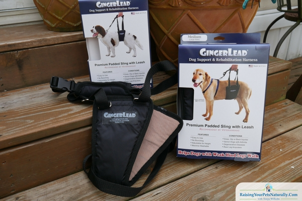 The GingerLead comes in a wide range of sizes