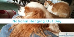 National Hanging Out Day : Wordless Wednsday