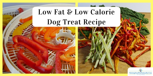 Low Fat and Low Calorie Dog Treats | Healthy Homemade Dog Treats. I want tohelp my dog lose weight withreal food and exercise, not with a nasty, processed, low-fat dog food. #raisingyourpetsnaturally