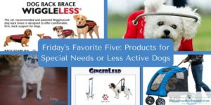 Friday's Favorite Five: Products for Special Needs or Less Active Dogs