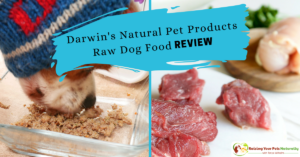 Best Raw Dog Food Reviews: Darwin's Natural Pet Products Raw Dog Food Review