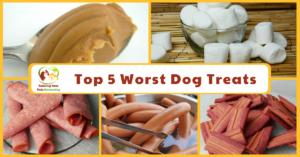 Top 5 Worst Treats You Should Never Give Your Dog or Cat | Toxic Dog Treats