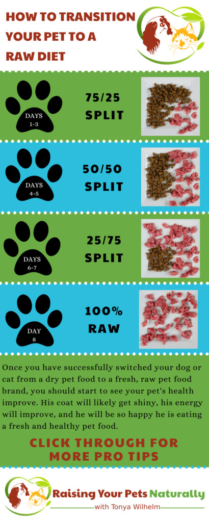 Transitioning your dog or cat to a raw pet food diet. A species appropriate raw pet food diet is a great way to provide your pet optimal health. #raisingyourpetsnaturally