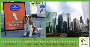 Dog-Friendly Chicago Attractions | Dog-Friendly Boat Tours-Shoreline Sightseeing