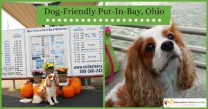 Dog-Friendly Vacations | Dog-friendly Put-in-Bay, Ohio Day Trips