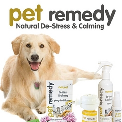 Natural calming solutions for pets
