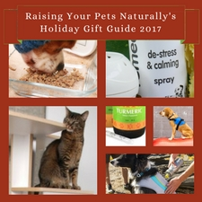 Pet Holiday Guide