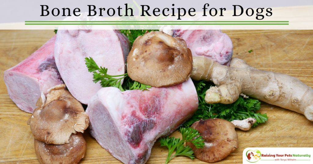 Bone broth recipe for your dog. Learn how to to make bone broth for your dog and the health benefits of bone broth. #raisingyourpetsnaturally