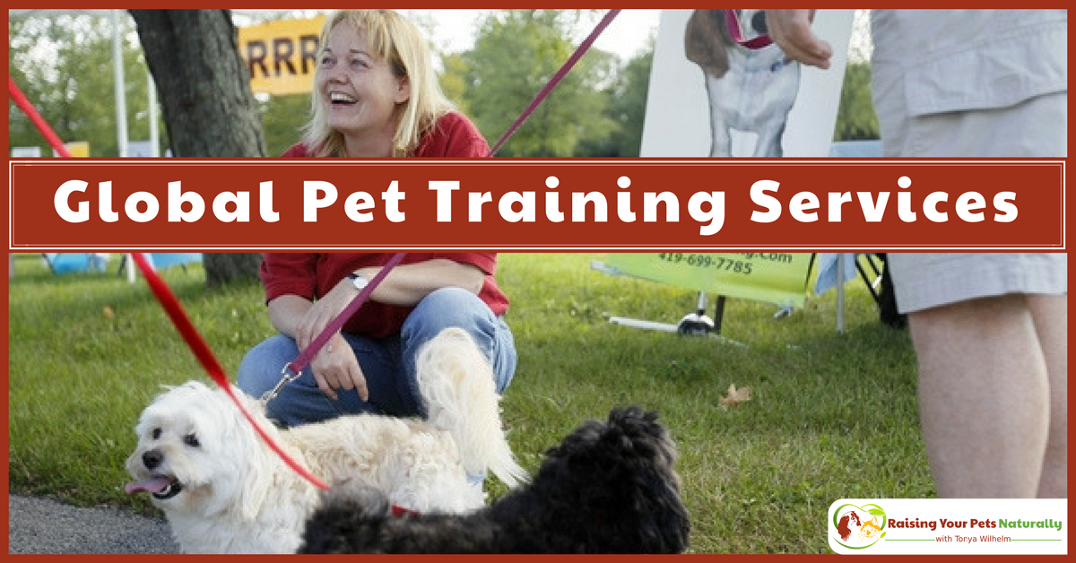 Dog and Cat Training Near Me