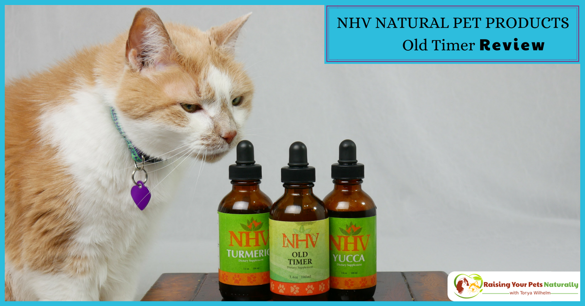 Applied Nutriceuticals Black Cats Reviews ...
