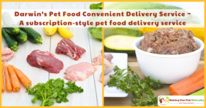 Dog and Cat Natural Raw Food Delivery Services | Subscription-Style Pet Food Delivery Services