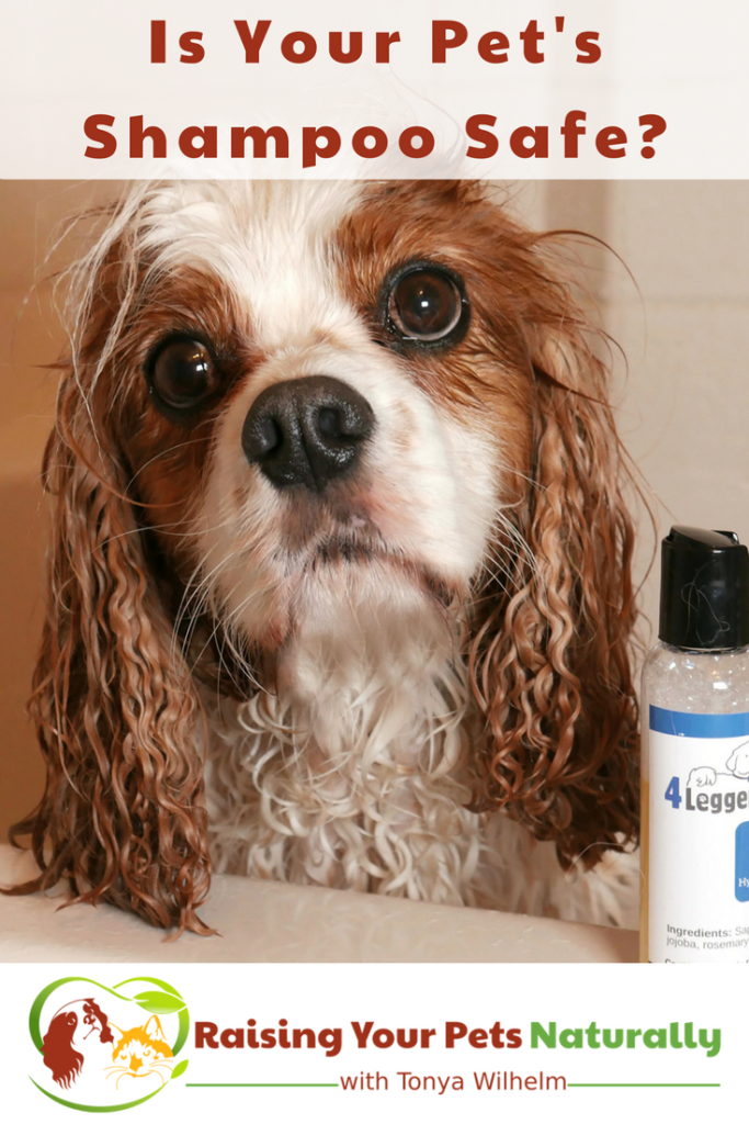 Is natural dog shampoo or natural dog shampoo really safe? Do you understand your dog shampoo's ingredient label? Learn how today. #raisingyourpetsnaturally #organicdogshampoo #naturaldogshampoo #dogshampoo #organicpetproducts #naturalpetproducts