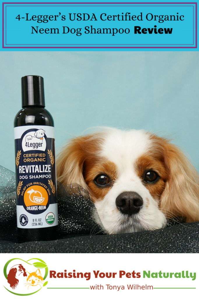 USDA Certified Organic Dog Shampoo with Organic Aloe Juice and Organic Essential Oils by 4-Legger. Organic Neem Dog Shampoo Review #raisingyourpetsnaturally #dogshampoo #dogshampooreview #bestdogshampoo #organicdogshampoo #naturaldogshampoo