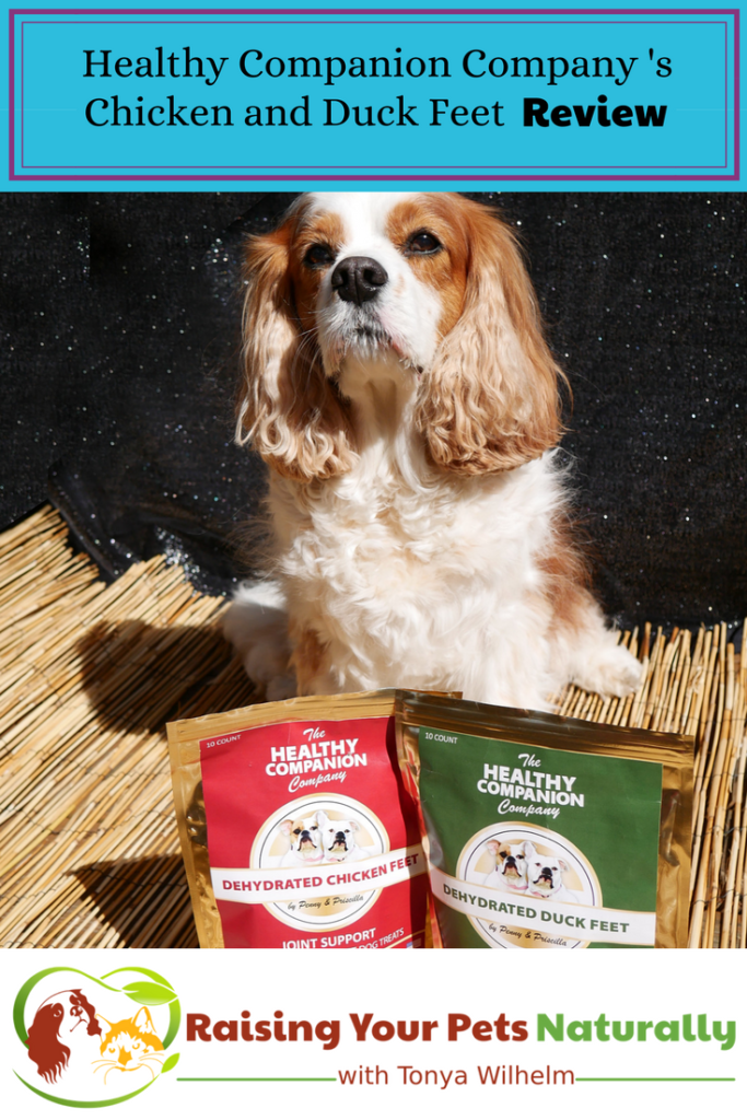 Best Dog Bones for Dogs. Healthy Companion Company's Dog Chicken Feet and Duck Feet for Dogs Review. #raisingyourpetsnaturally #chickenfeetfordogs #duckfeetfordogs #dogbone #dogbones #safedogchews