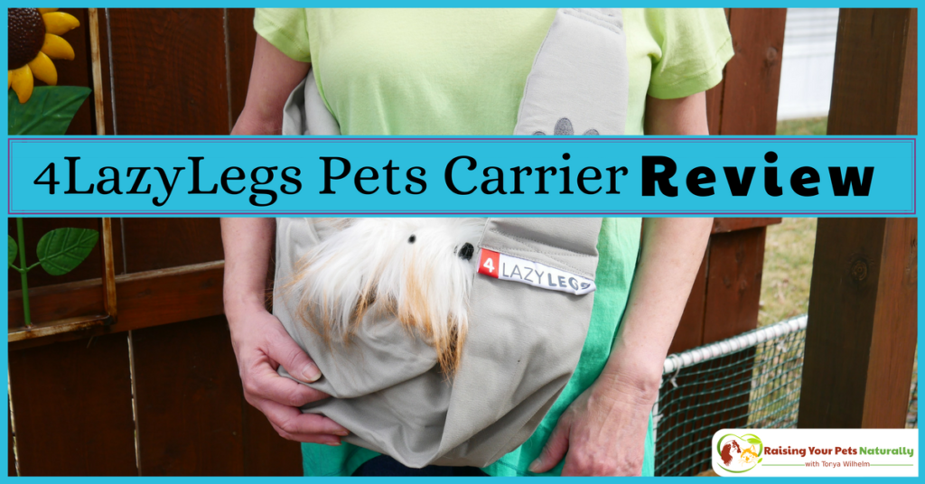 4LazyLegs Pets Carrier sling review. Sometimes a dog needs a little help and a dog sling just may be the solution. #raisingyourpetsnaturally
