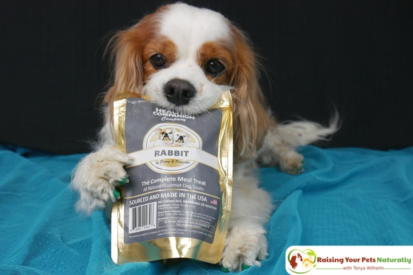 Best Natural Dog Training Treats for Dog Training Motivation. Learn why Dexter loves The Healthy Companion Company's wholesome dog treats. #raisingyourpetsnaturally