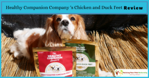 Best Dog Bones for Dogs | Healthy Companion Company Dog Chicken Feet and Duck Feet for Dogs Review