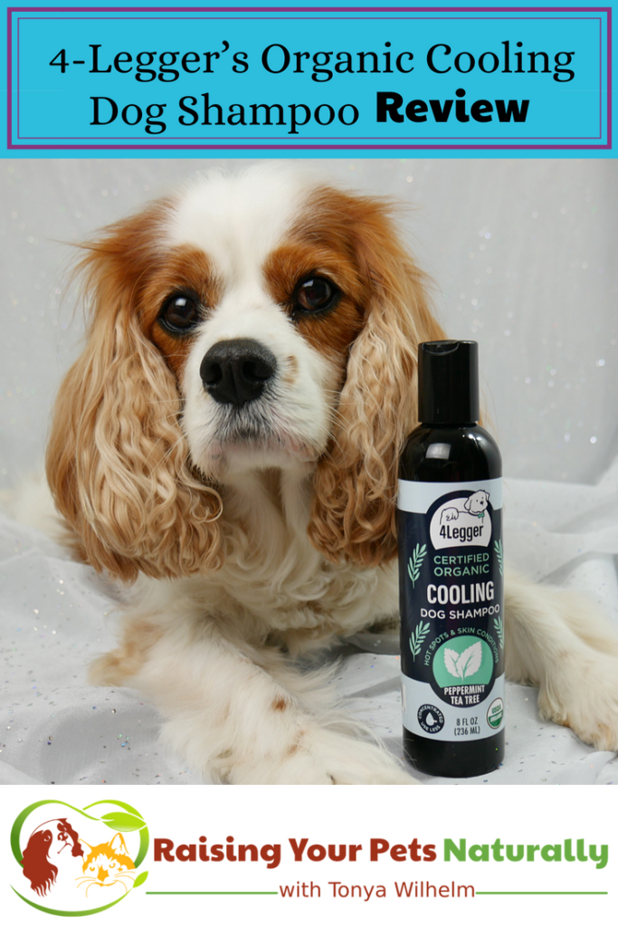 Natural Dog Shampoo Review: USDA Certified Organic Dog Shampoo with Peppermint and Tea Tree Oil by 4-Legger. #raisingyourpetsnaturally #dogshampoo #bestdogshampoo #naturaldogshampoo #organicdogshampoo