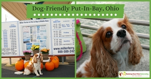 Dog-friendly Put-in-Bay Ohio